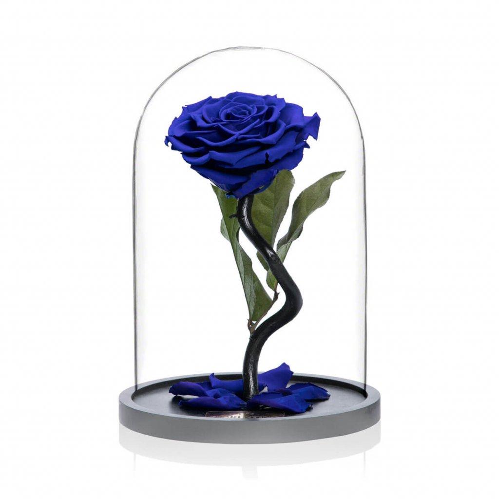 BELLE'S SECRET – ROYAL BLUE M