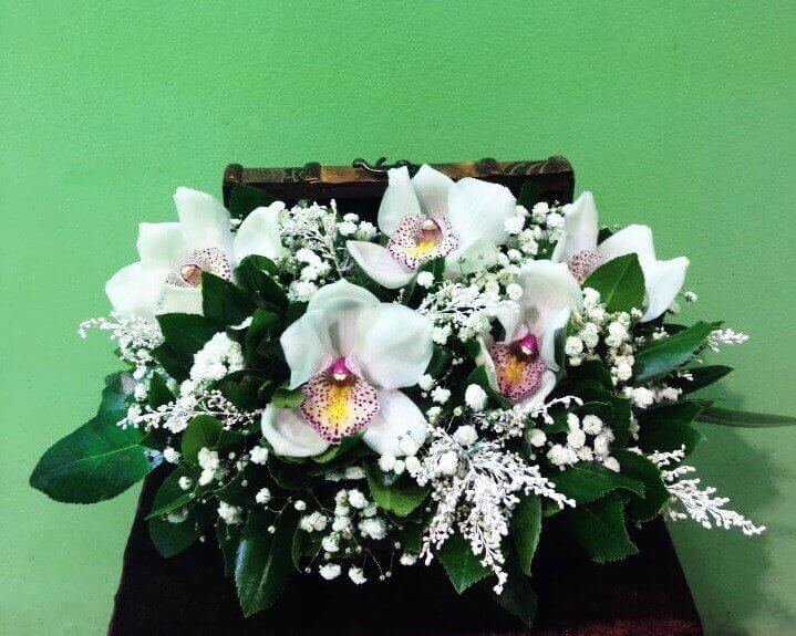 ORCHID CHEST