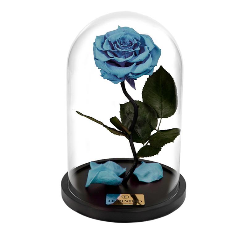 BELLE'S SECRET – BABY BLUE M